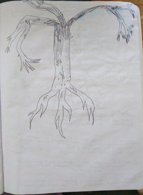 How to draw a tree:Step 1: Start on the rootsStep 2: Then we start drawing  the trunk of the tree.Step 3: Shade the trunk inStep 4: Draw the branches on the tree.Step 5: Detail the whole tree againStep 6: With the branches out draw little tips of tiny branchesStep 7: Then lightly shade the branches of the tree from light to darkStep 8: Make sure there are curves and not just straight lines. Add details.  -