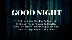Good Night Shayari Pic download full HD free download.