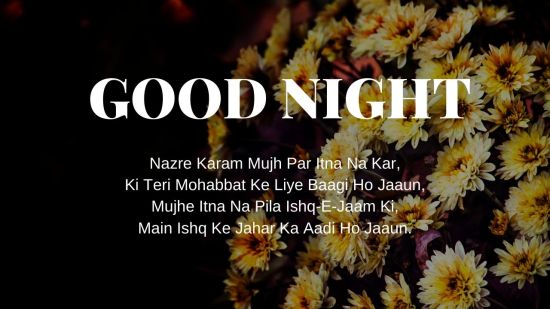 Good Night Shayari Pic