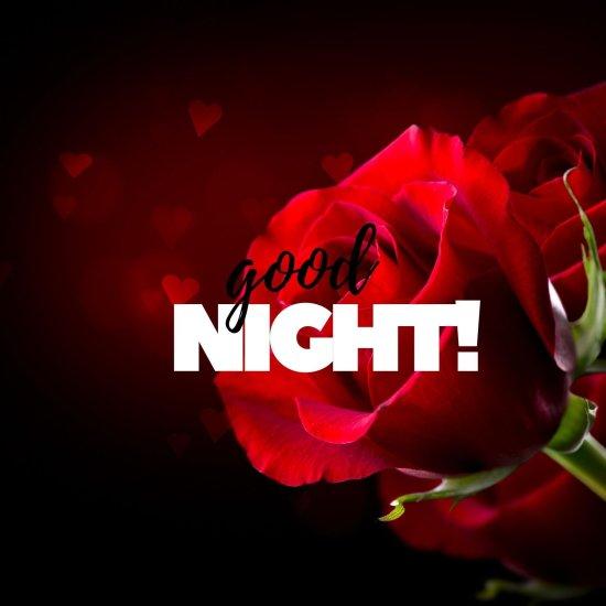 Good Night flower ros image