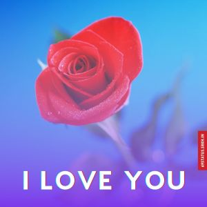 I Love You images download hd full HD free download.
