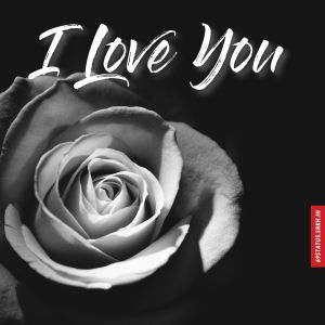 I Love You s images full HD free download.