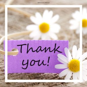 Thank You Flowers Images HD full HD free download.
