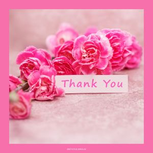 Thank You Images with Flowers HD full HD free download.