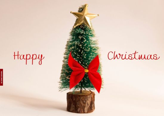 Christmas Tree Images Download