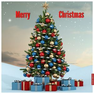 Image Of Christmas Tree full HD free download.