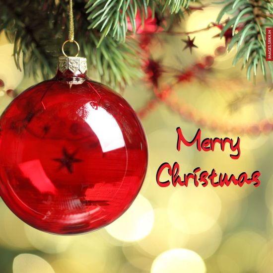 Merry Christmas Day Image Download