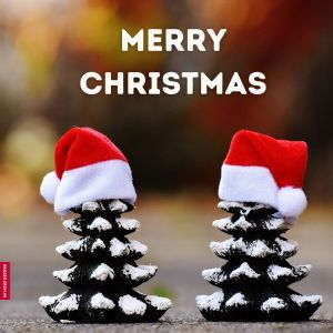 Www Christmas Images full HD free download.
