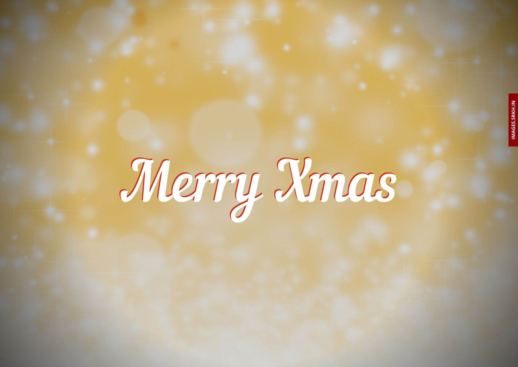 Xmas Star Images full HD free download.