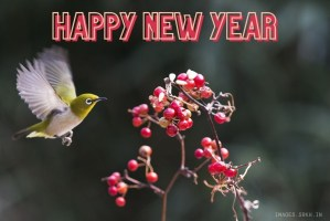 Happy New Year Banner full HD free download.