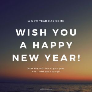 Wish You Happy New Year full HD free download.
