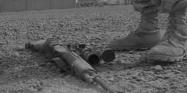 gun 780342