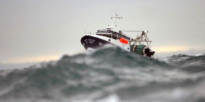 Plus de 200 grands chefs s'engagent contre la pêche électrique