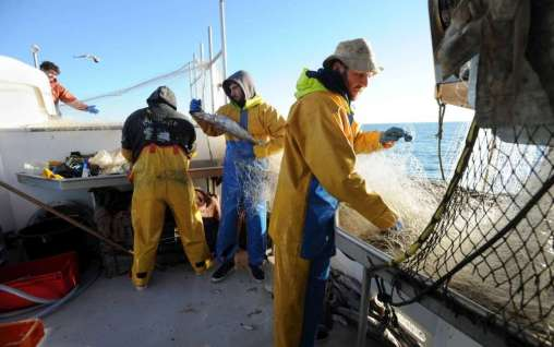 Marins-pêcheurs de chalutier