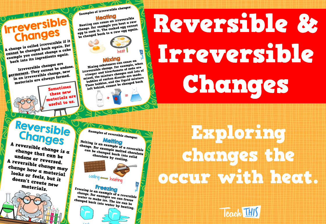 Reversible Irreversible Changes Posters
