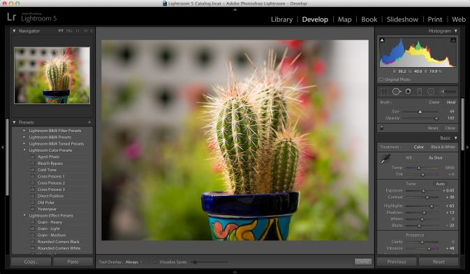 Image of Adobe Lightroom photo editing app