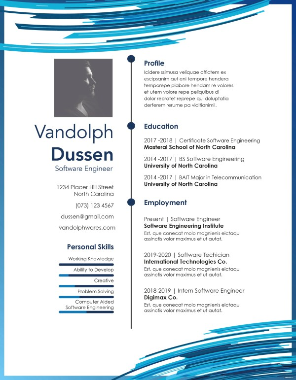 Free Resume Experienced Software Engineer Template In