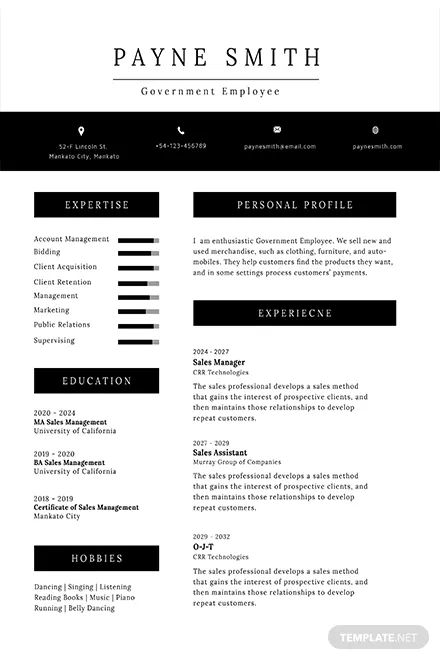 resume format for experienced template