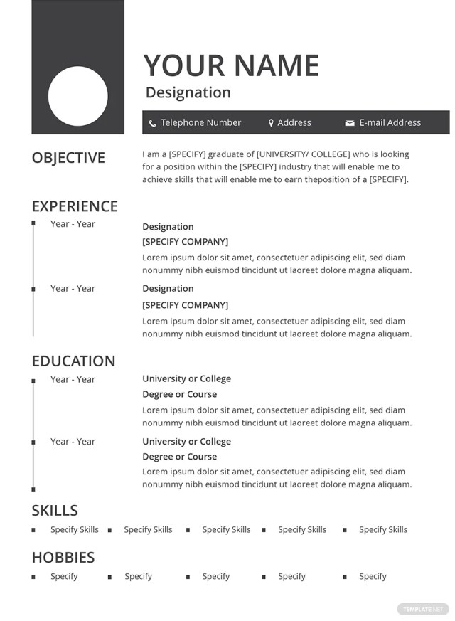 Free Fill In Blank Resume Templates