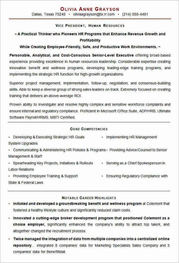 executive resume examples 2014