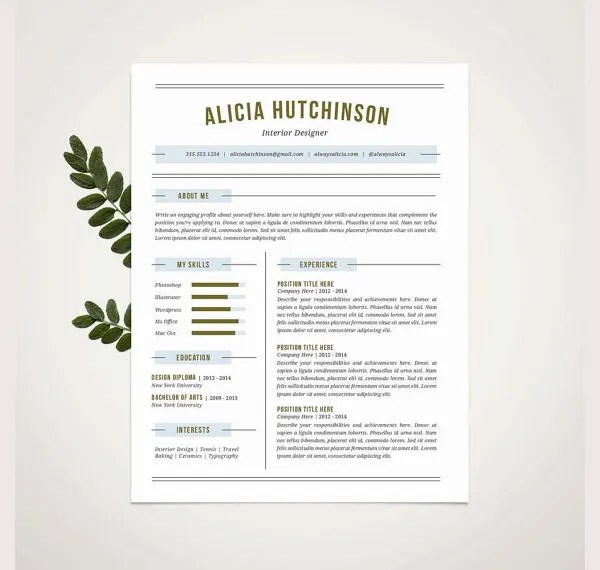 Professional Resume Template - 60+ Free Samples, Examples, Format ...
