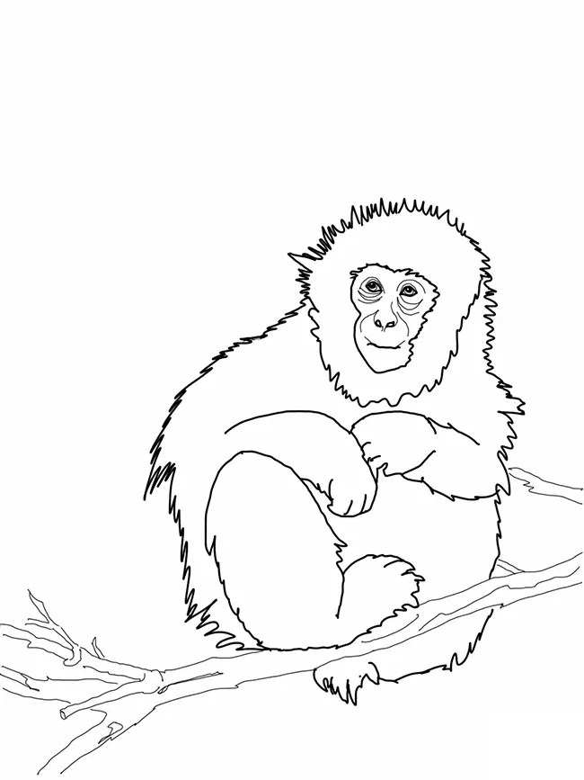 Funky Coloring Pages Coloring Pages