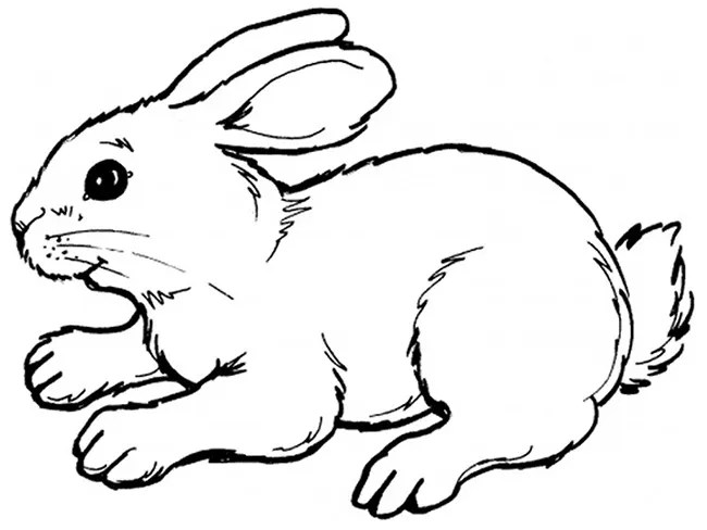 60+ Rabbit Shape Templates and Crafts & Colouring Pages