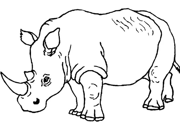 Blank Face Coloring Pages For Kids Sketch Coloring Page