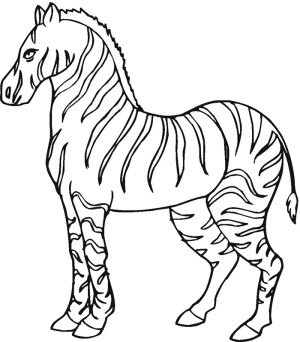 zebra template templates simple animal