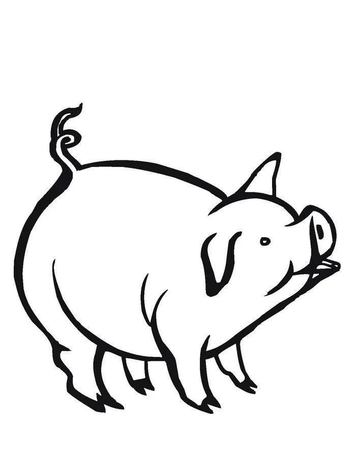 pig stencil printable