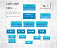 Adobe Illustrator Org Chart Template Inspirational