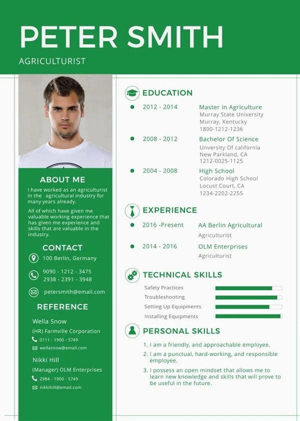 resume template for long resume