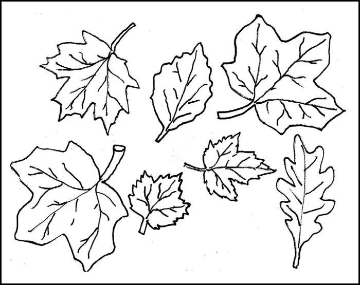Wood Printable Patterns Free Cutout