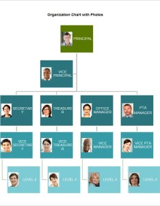 Free organizational chart template word pdf documents download  premium templates also rh