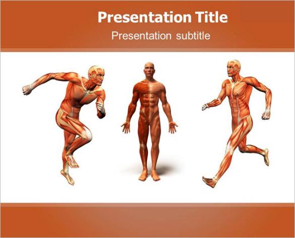 human body template printable