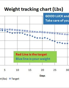 Sample weight tracking chart template also loss  free word excel pdf format rh