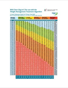 Example bmi chart template pdf format also templates doc excel free  premium rh