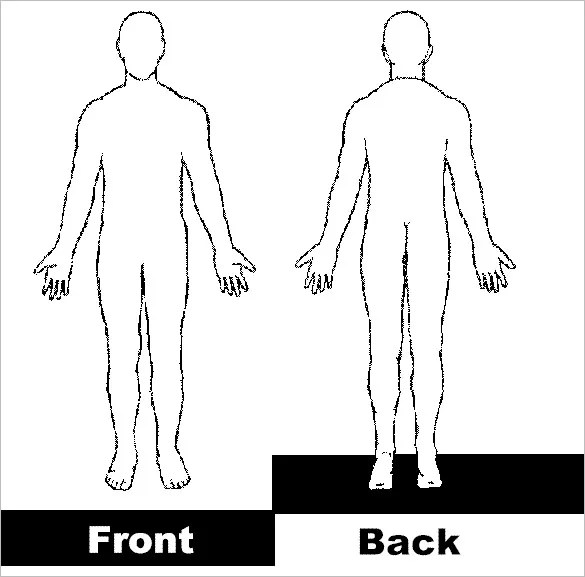 Blank Body Diagram – craftbrewswag.info