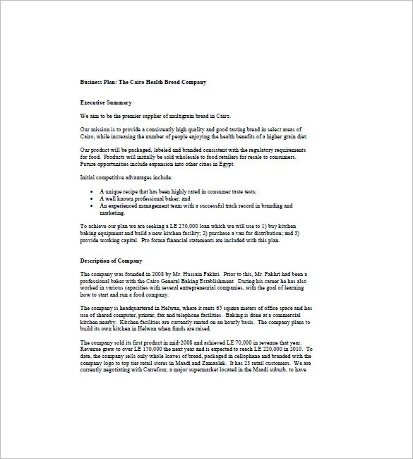 Web based company business plan