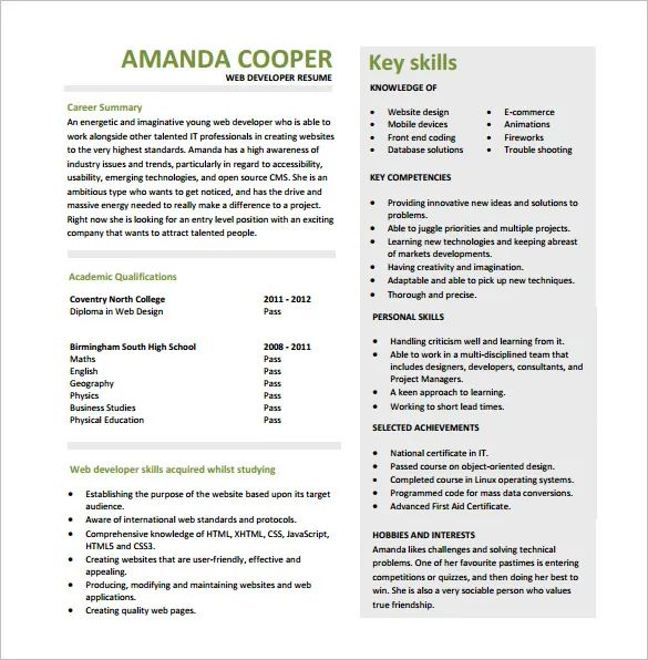 resume template .net developer