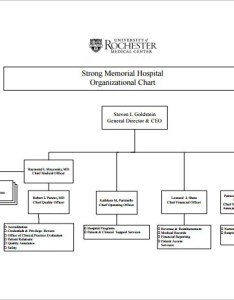 Free hospital organizational chart pdf download also template word documents rh