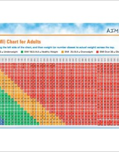 Body mass index bmi chart for adults free pdf template also templates doc excel  premium rh