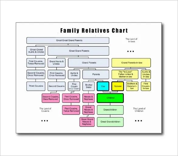 diagram of a family tree chart