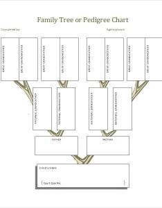 family tree templates pdf doc excel psd free  premium also rh template