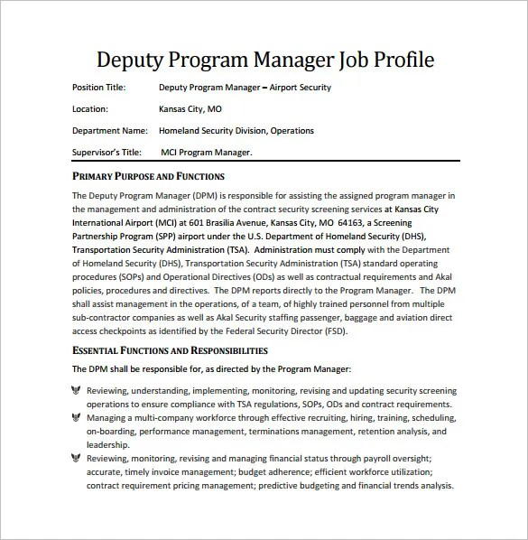Program Security Manager
