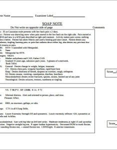Medical soap note free pdf downloads also templates  sample example format download rh template