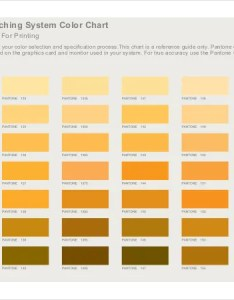Sample pantone matching system color chart pdf download also templates doc free  premium rh template
