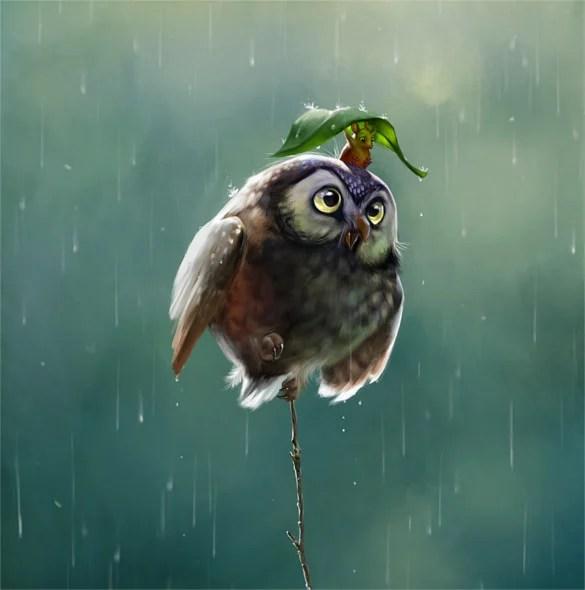 Baby Girl Owl Wallpaper Digital Illustration Artworks 34 Free Psd Jpeg Format
