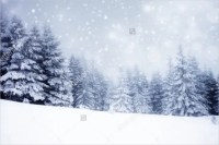 95+ Winter Backgrounds  Free PSD, EPS, AI, Illustrator