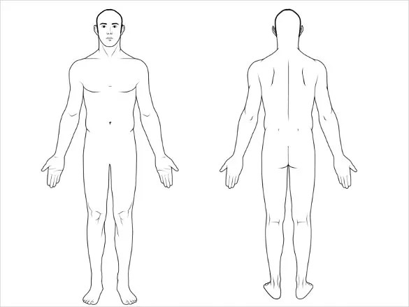 Blank Body Chart - FREE DOWNLOAD - Aashe